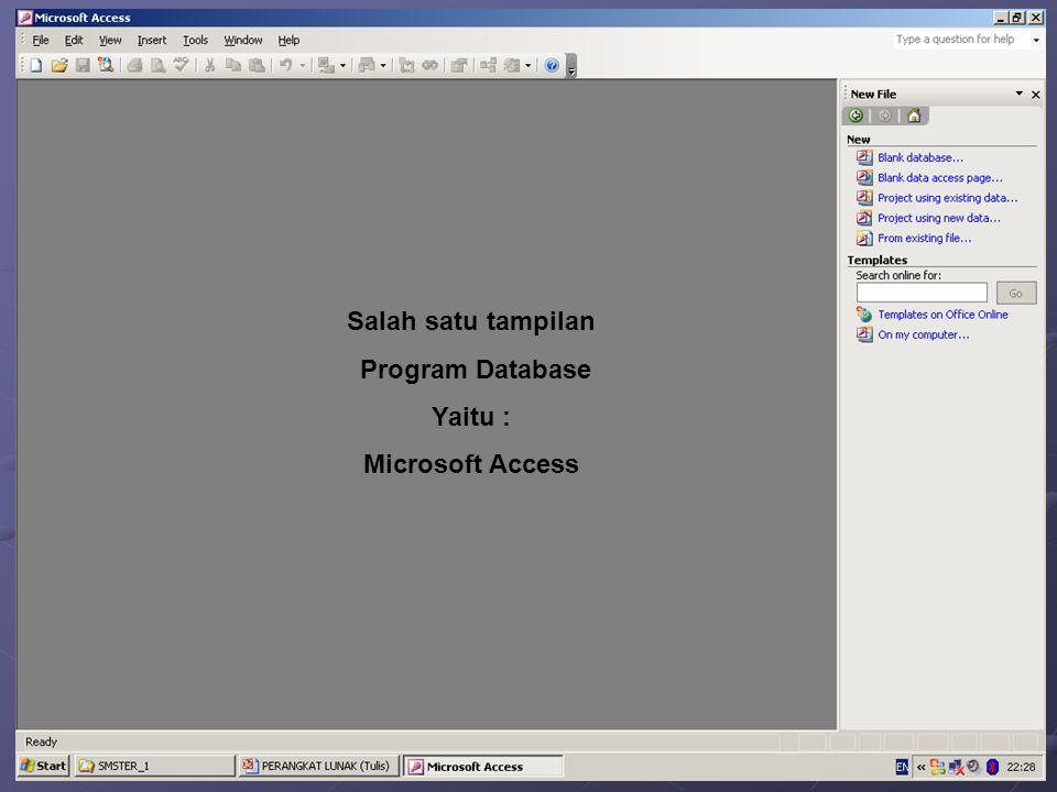 Salah satu tampilan Program Database Yaitu : Microsoft Access