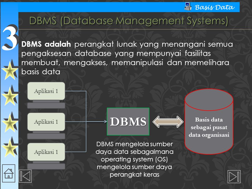 DBMS (Database Management Systems)