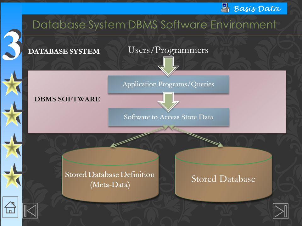 Database System DBMS Software Environment