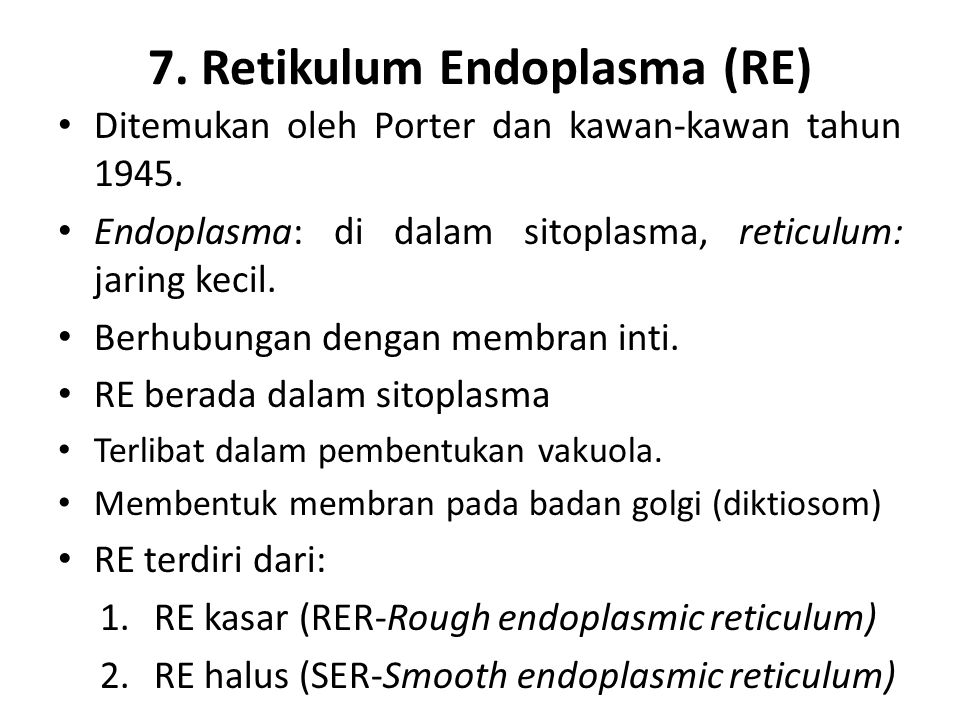 7. Retikulum Endoplasma (RE)