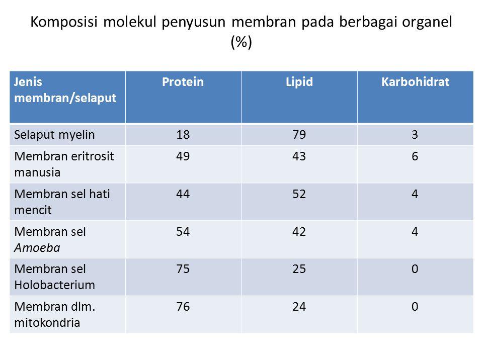 Komposisi molekul penyusun membran pada berbagai organel (%)