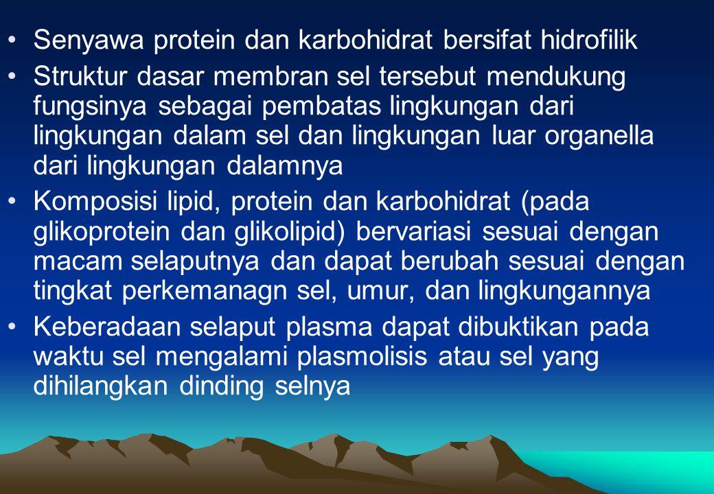 Senyawa protein dan karbohidrat bersifat hidrofilik
