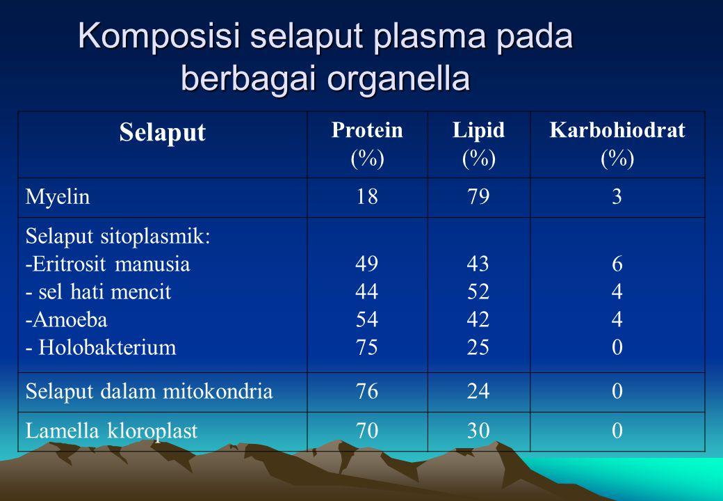 Komposisi selaput plasma pada berbagai organella