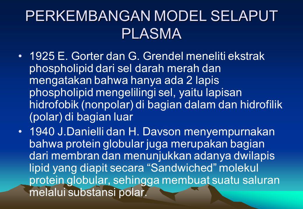 PERKEMBANGAN MODEL SELAPUT PLASMA