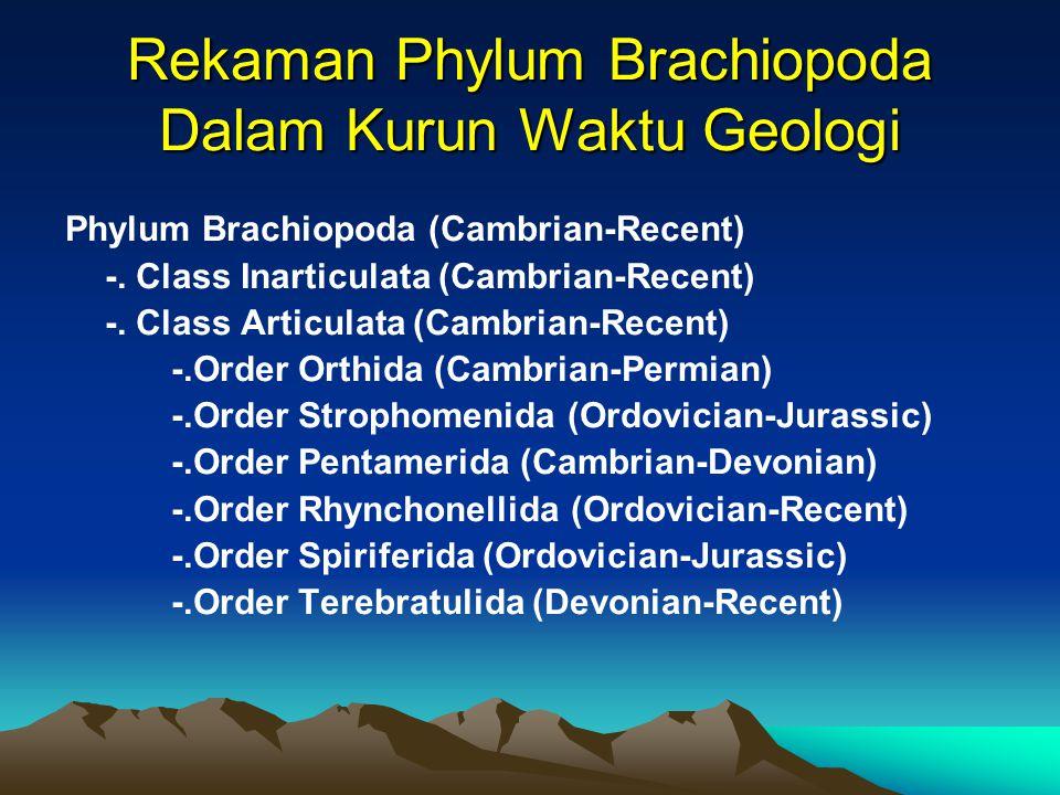 Rekaman Phylum Brachiopoda Dalam Kurun Waktu Geologi