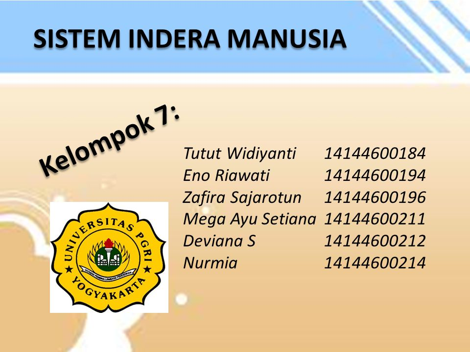 SISTEM INDERA MANUSIA Kelompok 7: Tutut Widiyanti 14144600184
