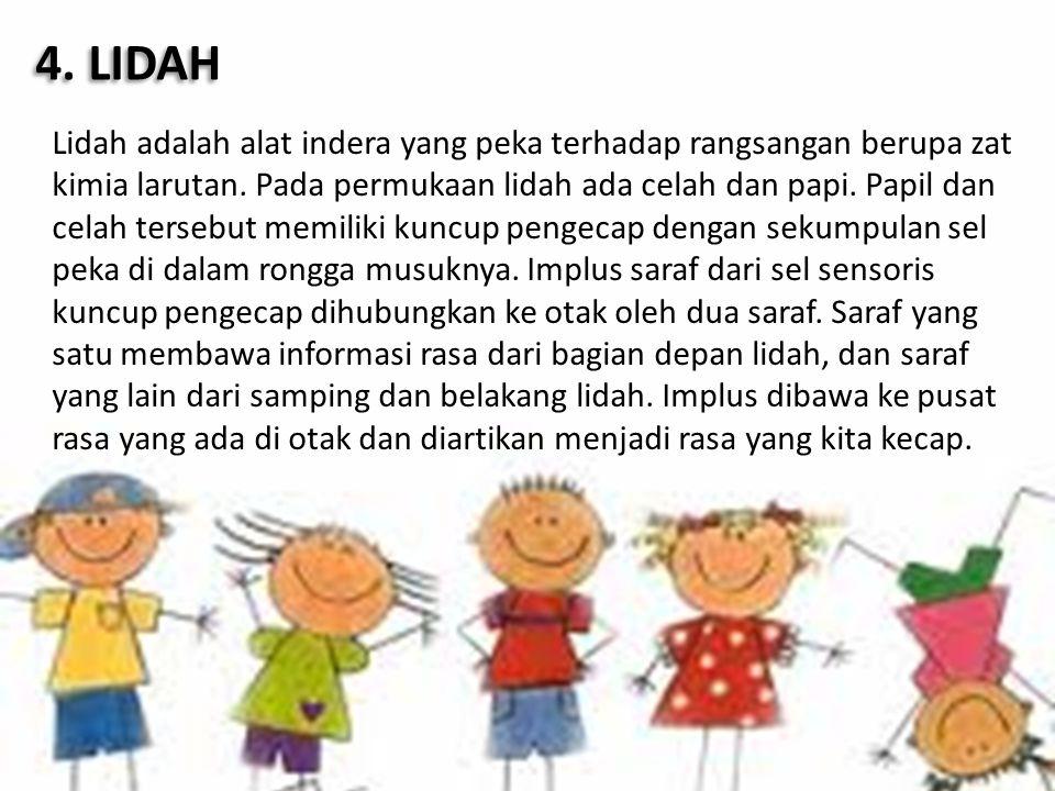 4. LIDAH