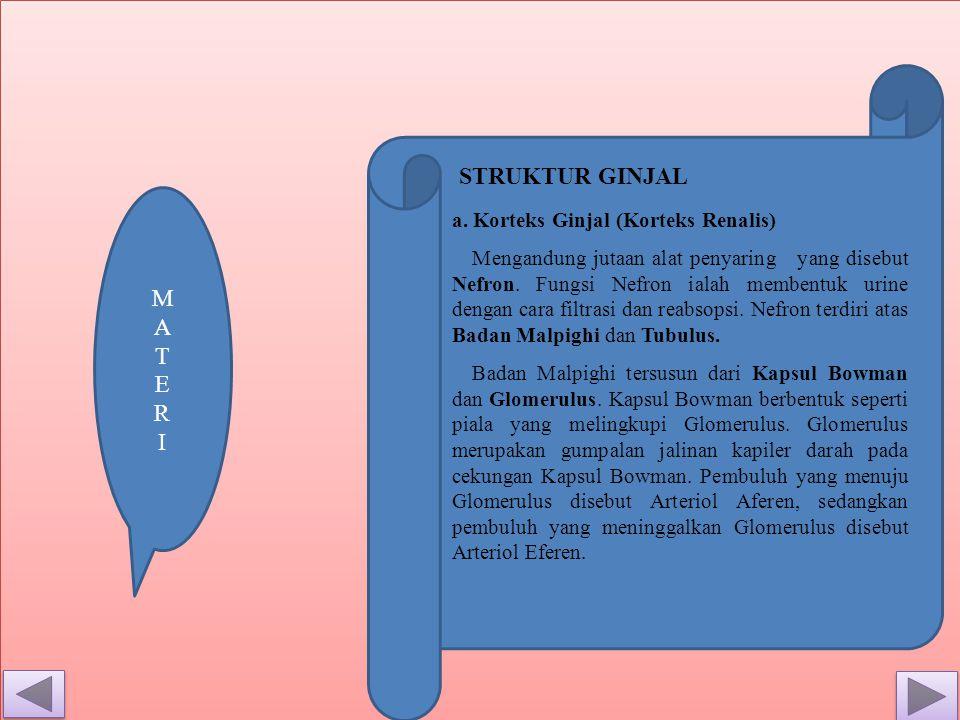 STRUKTUR GINJAL M A T E R I a. Korteks Ginjal (Korteks Renalis)