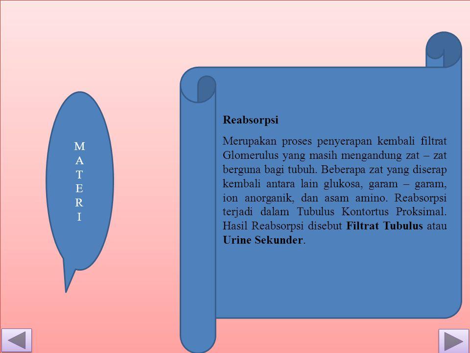 M A T E R. I. Reabsorpsi.