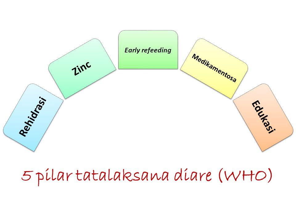 5 pilar tatalaksana diare (WHO)
