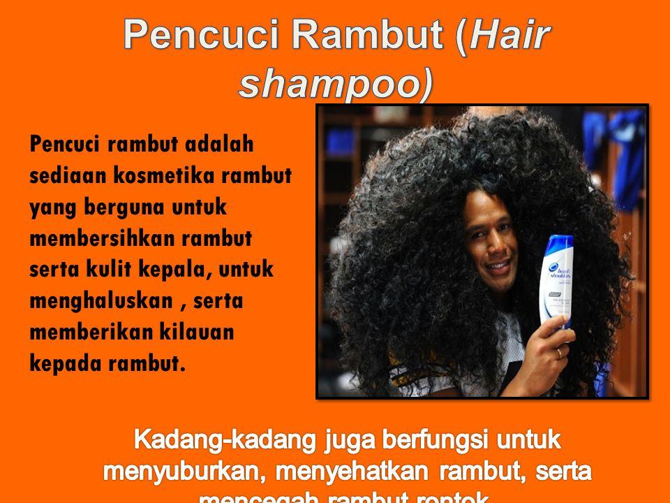 Pencuci Rambut (Hair shampoo)