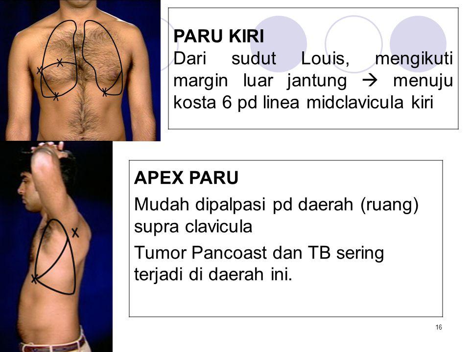 PARU KIRI Dari sudut Louis, mengikuti margin luar jantung  menuju kosta 6 pd linea midclavicula kiri.