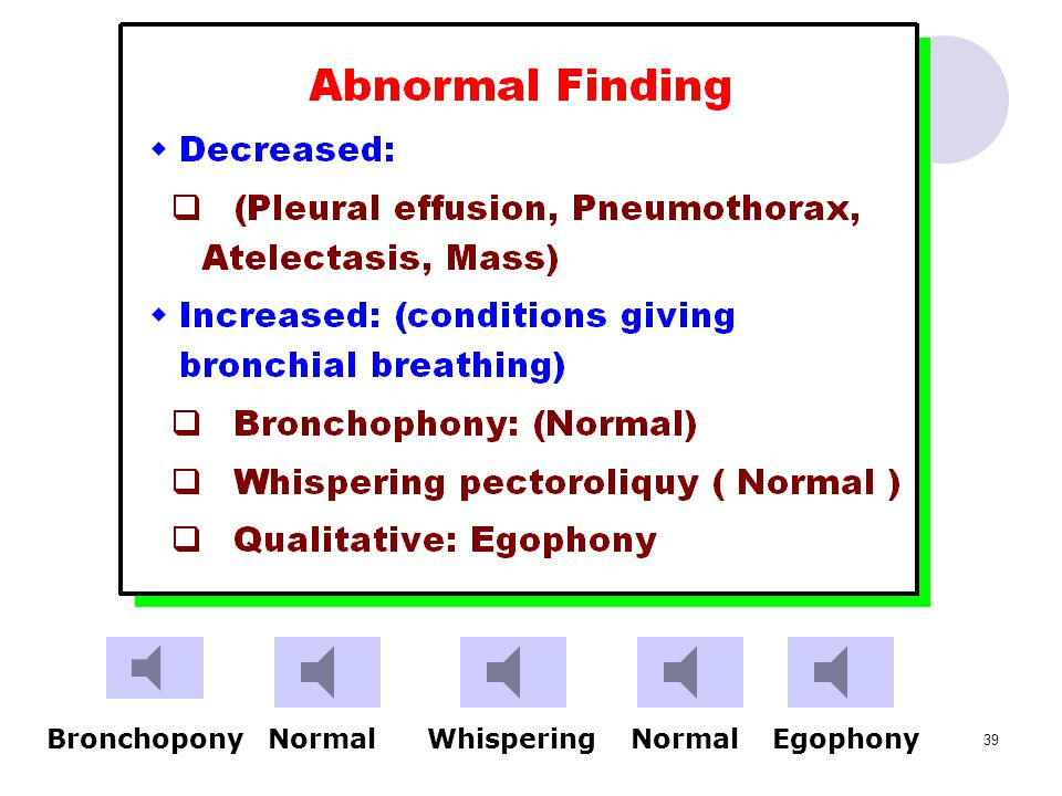 Bronchopony Normal Whispering Normal Egophony