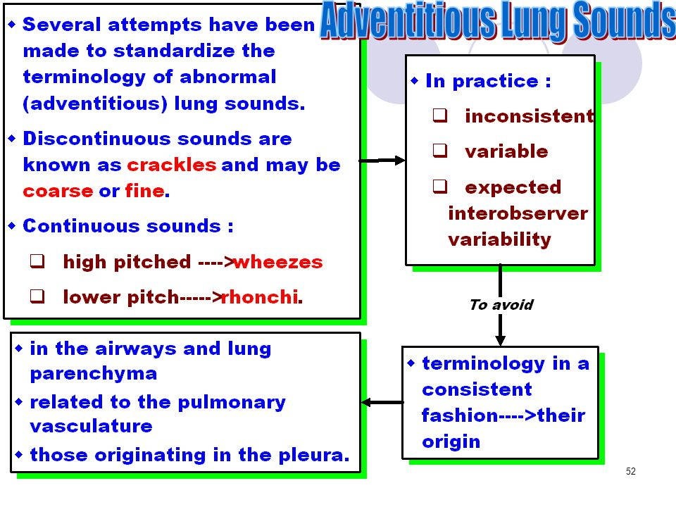 Adventitious Lung Sounds