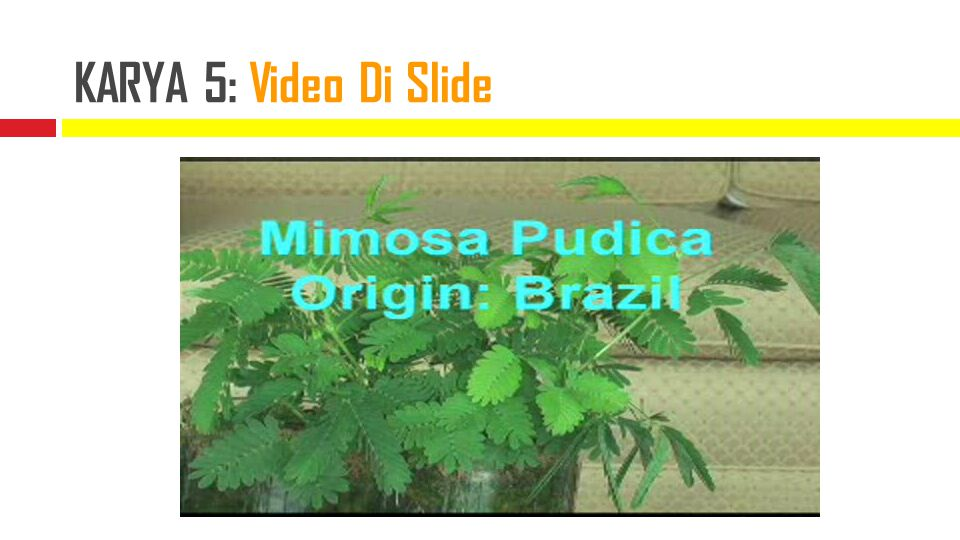 KARYA 5: Video Di Slide created by gunarno