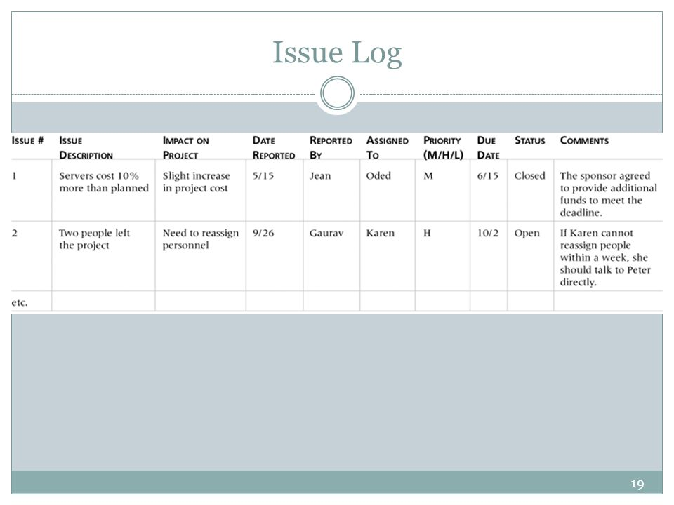 Issue Log