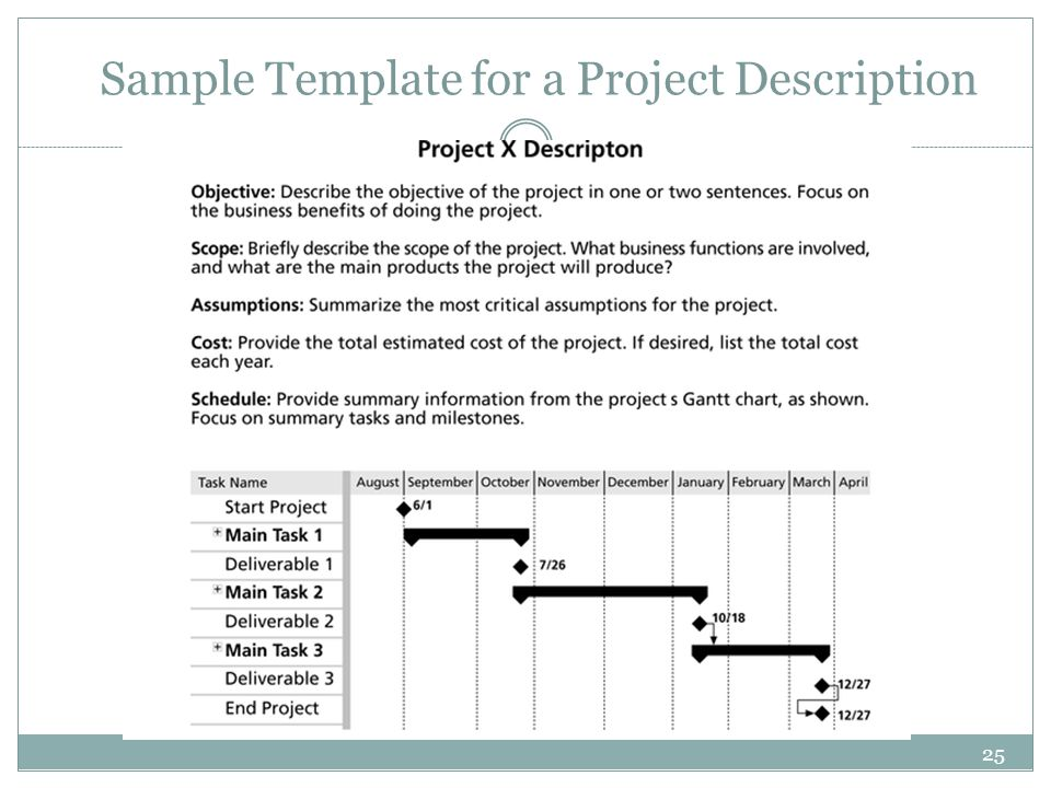 Sample Template for a Project Description
