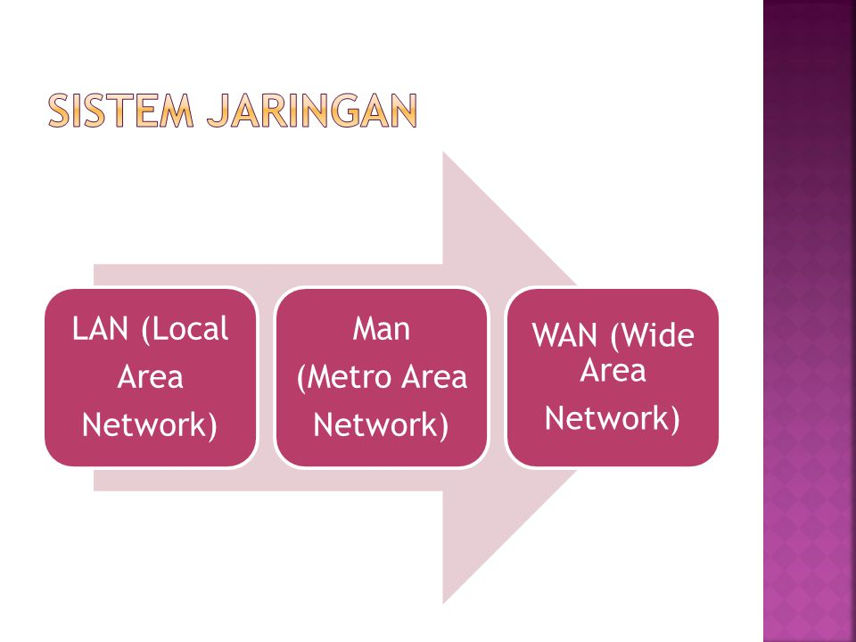 Sistem Jaringan LAN (Local Network) Area (Metro Area Man