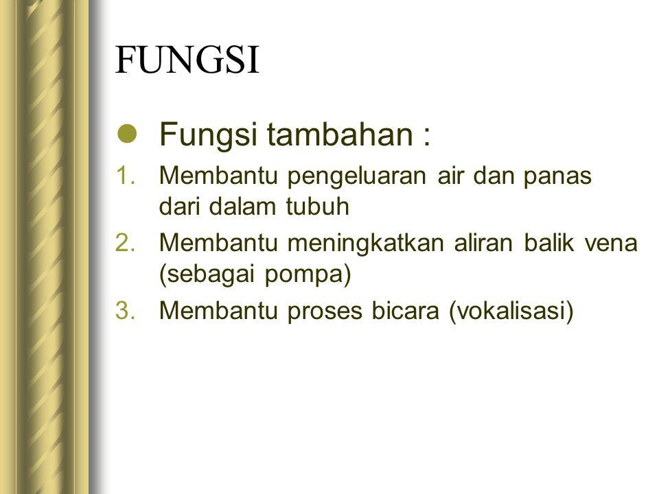 FUNGSI Fungsi tambahan :