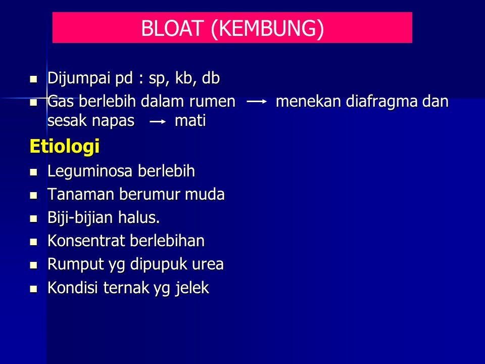 BLOAT (KEMBUNG) Etiologi Dijumpai pd : sp, kb, db