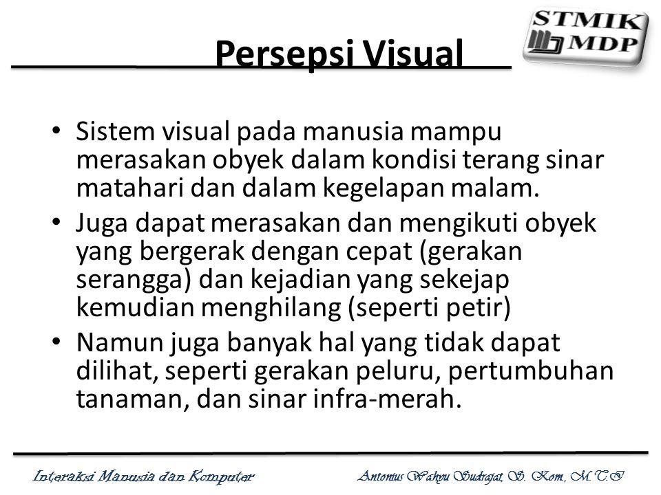 Persepsi Visual Sistem visual pada manusia mampu merasakan obyek dalam kondisi terang sinar matahari dan dalam kegelapan malam.