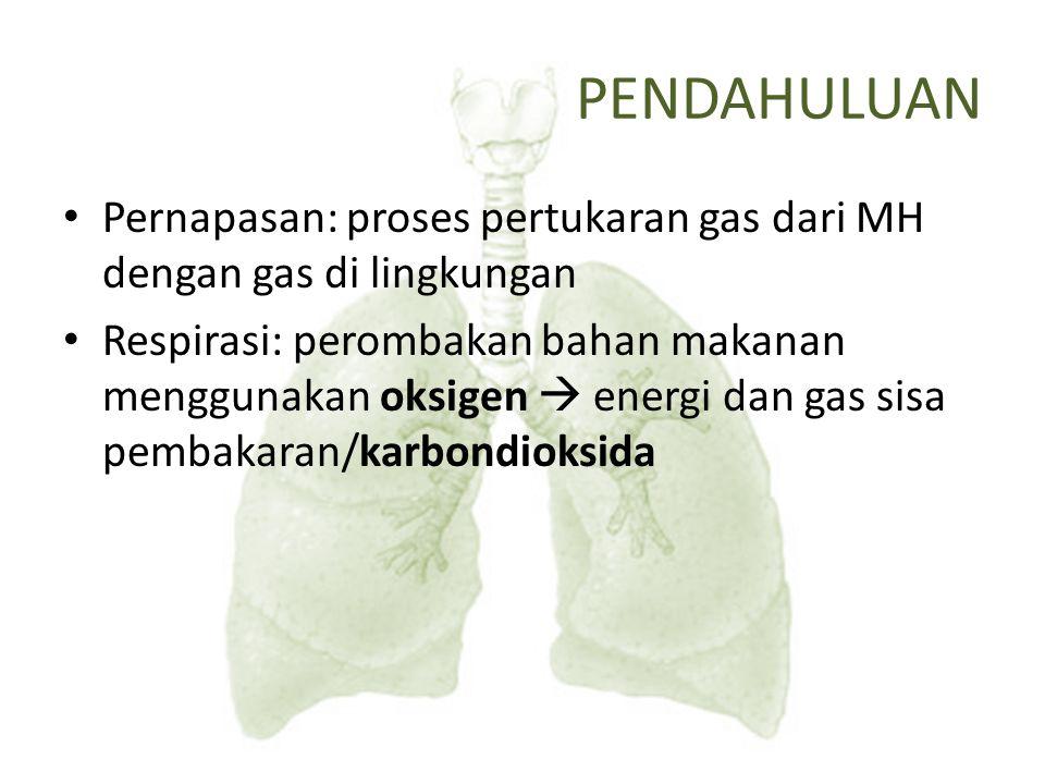 PENDAHULUAN Pernapasan: proses pertukaran gas dari MH dengan gas di lingkungan.
