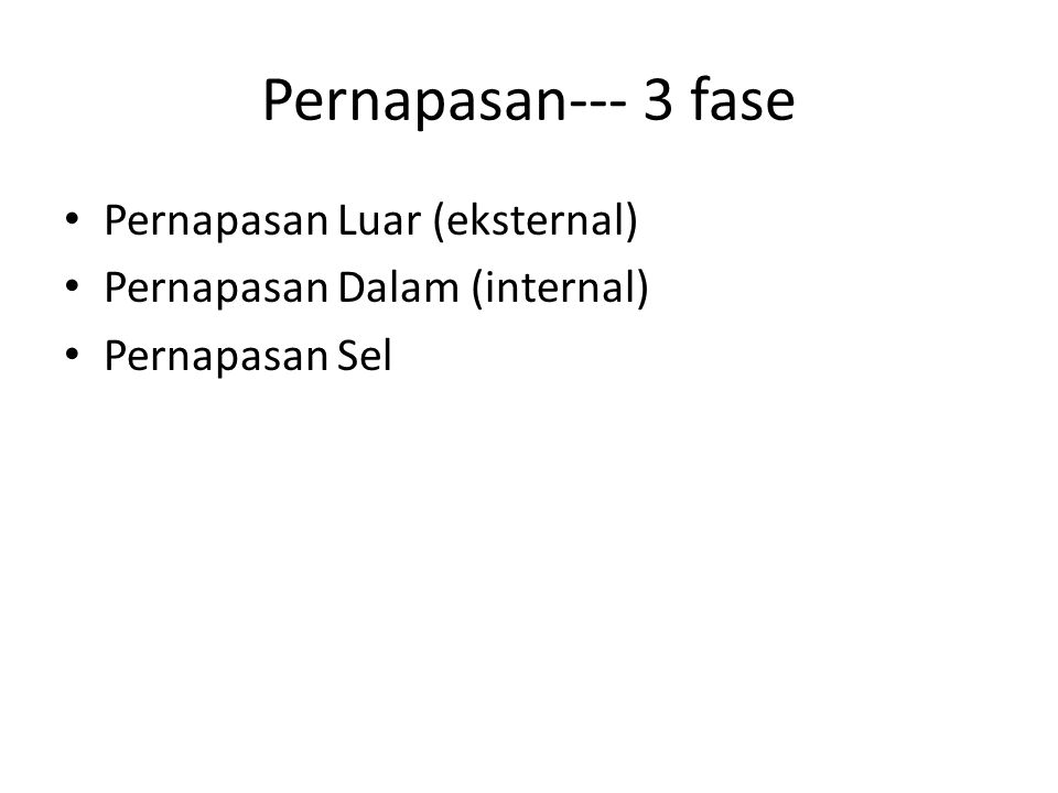 Pernapasan--- 3 fase Pernapasan Luar (eksternal)