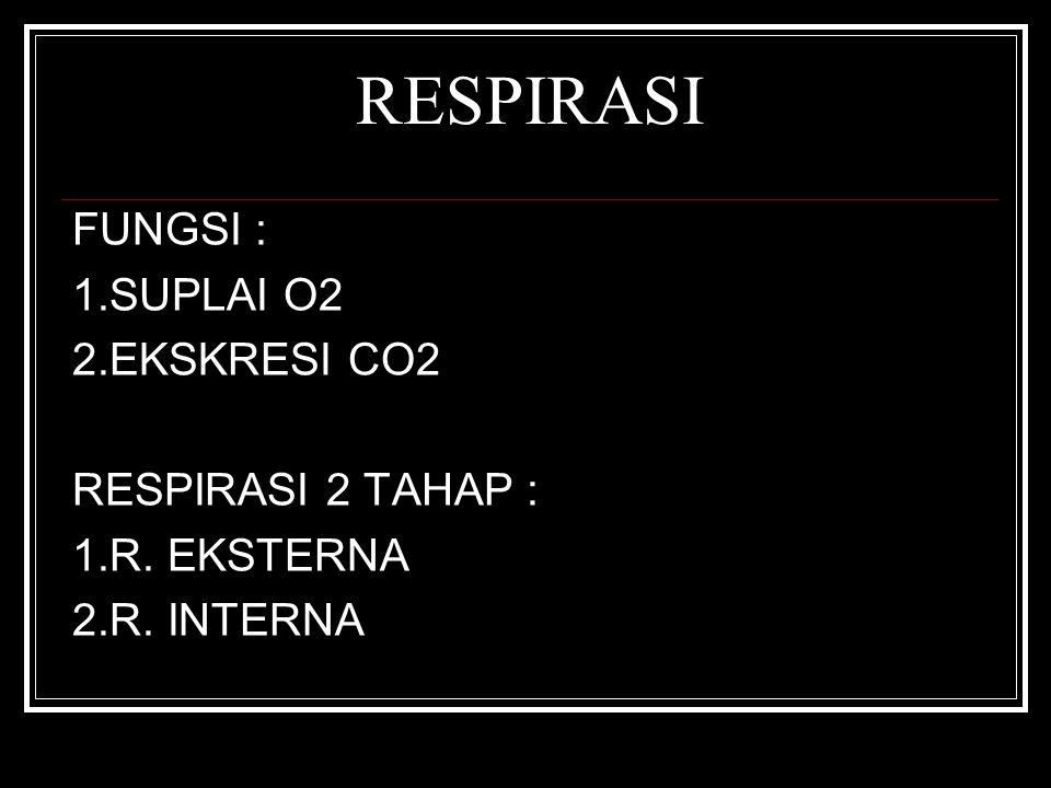 RESPIRASI FUNGSI : 1.SUPLAI O2 2.EKSKRESI CO2 RESPIRASI 2 TAHAP :