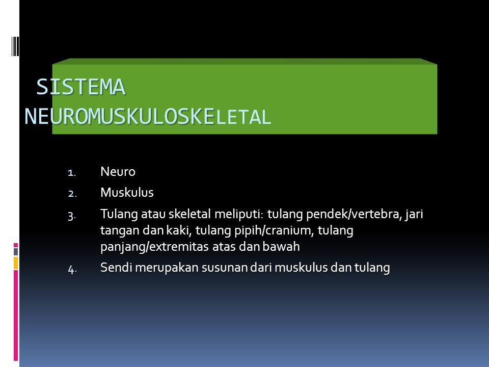 SISTEMA NEUROMUSKULOSKELETAL