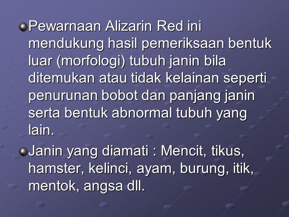 Pewarnaan Alizarin Red ini mendukung hasil pemeriksaan bentuk luar (morfologi) tubuh janin bila ditemukan atau tidak kelainan seperti penurunan bobot dan panjang janin serta bentuk abnormal tubuh yang lain.