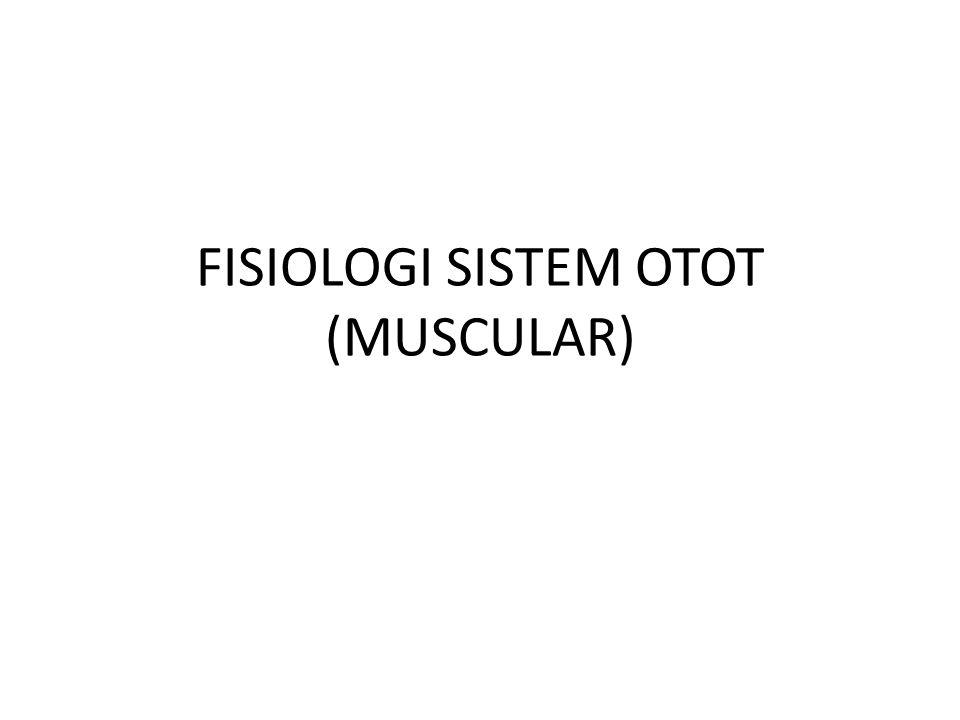 FISIOLOGI SISTEM OTOT (MUSCULAR)