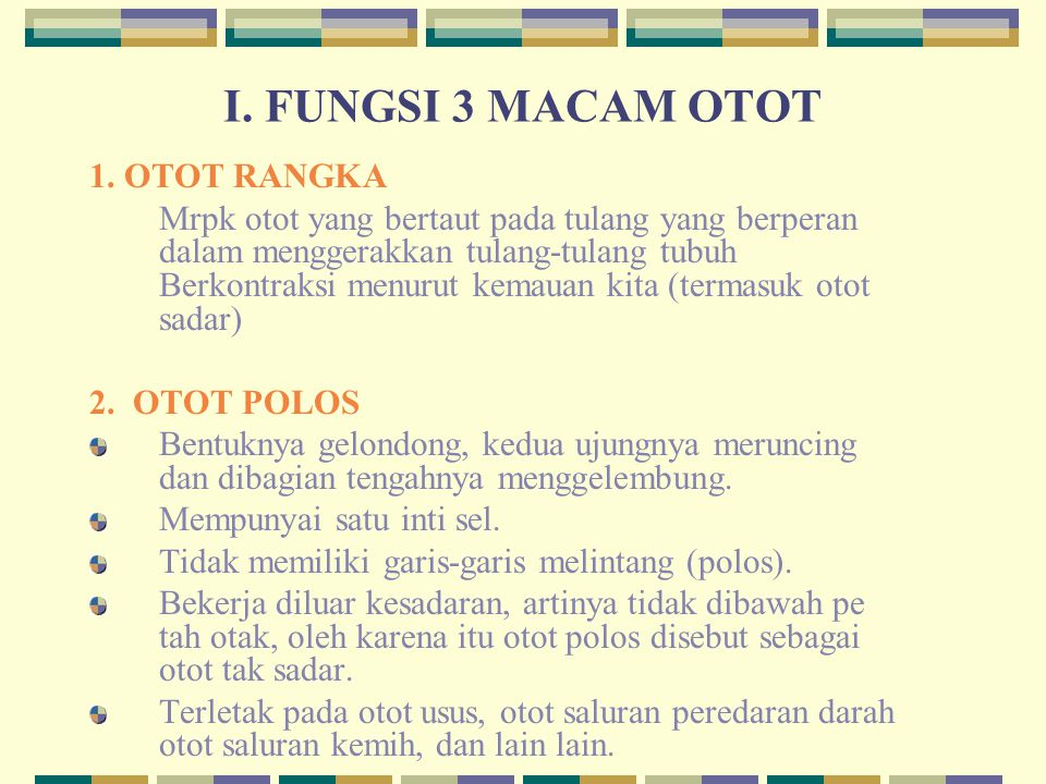 I. FUNGSI 3 MACAM OTOT 1. OTOT RANGKA