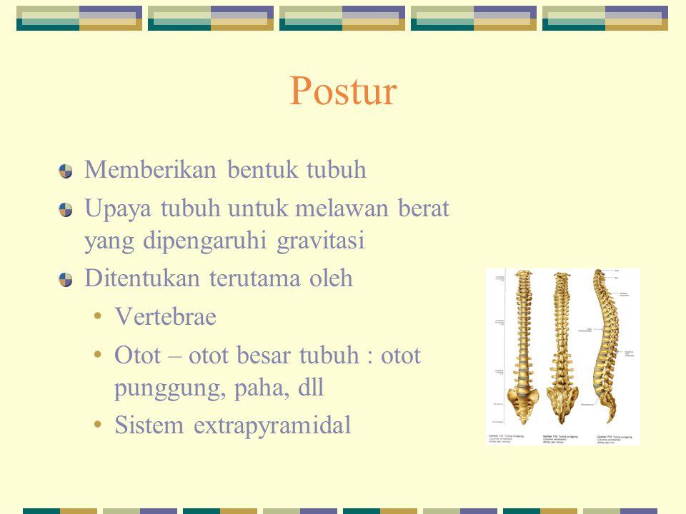 Postur Memberikan bentuk tubuh