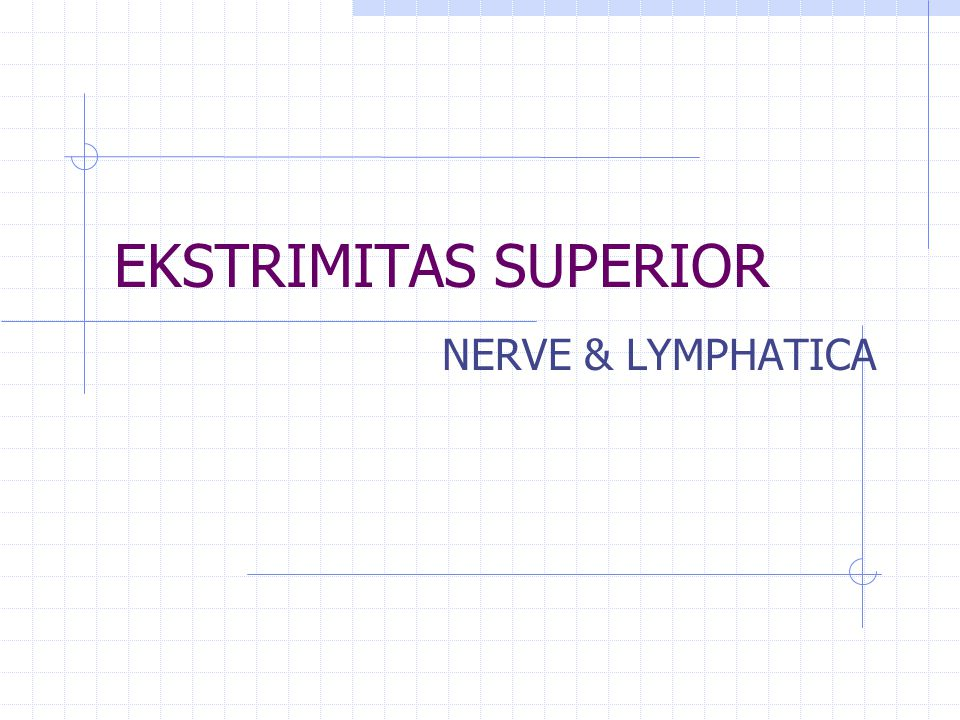 EKSTRIMITAS SUPERIOR NERVE & LYMPHATICA