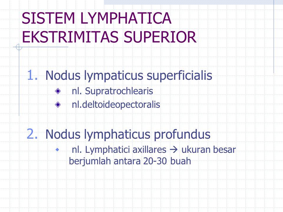 SISTEM LYMPHATICA EKSTRIMITAS SUPERIOR