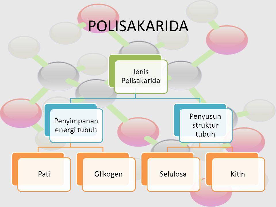POLISAKARIDA Jenis Polisakarida Penyimpanan energi tubuh Pati Glikogen