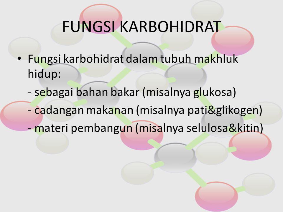 FUNGSI KARBOHIDRAT Fungsi karbohidrat dalam tubuh makhluk hidup: