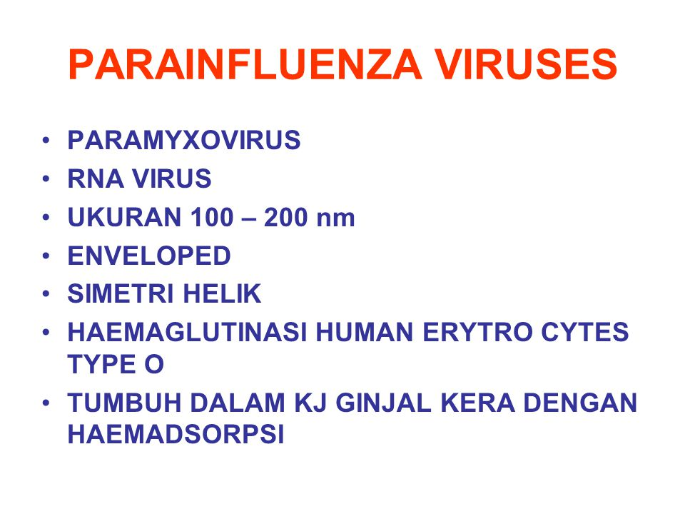 PARAINFLUENZA VIRUSES