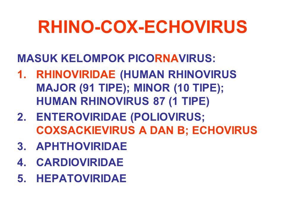 RHINO-COX-ECHOVIRUS MASUK KELOMPOK PICORNAVIRUS: