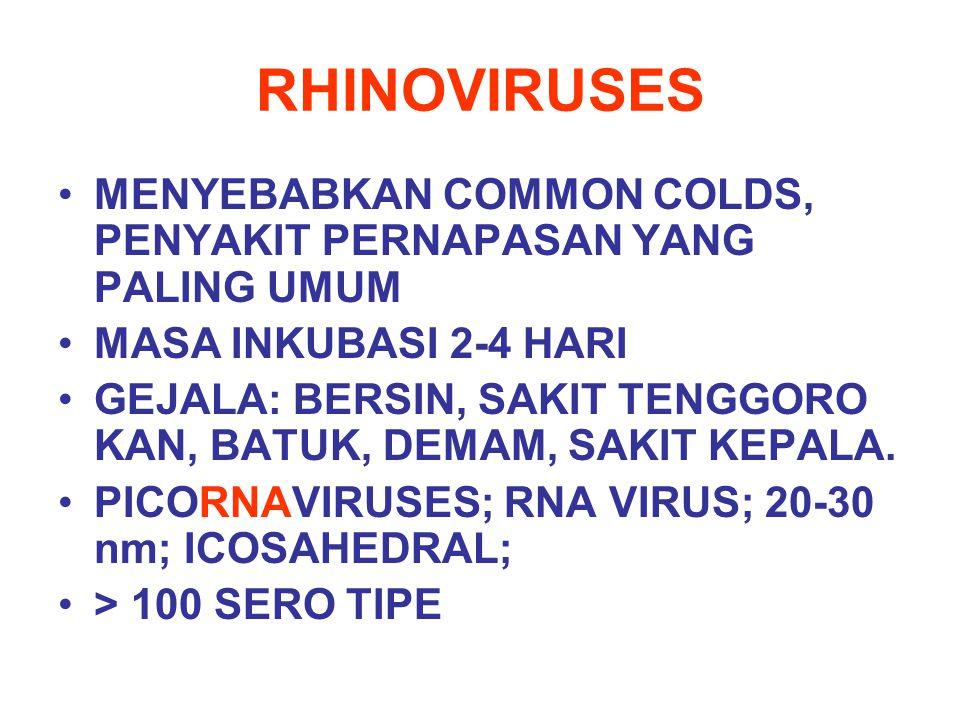 RHINOVIRUSES MENYEBABKAN COMMON COLDS, PENYAKIT PERNAPASAN YANG PALING UMUM. MASA INKUBASI 2-4 HARI.