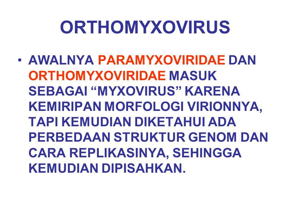 ORTHOMYXOVIRUS
