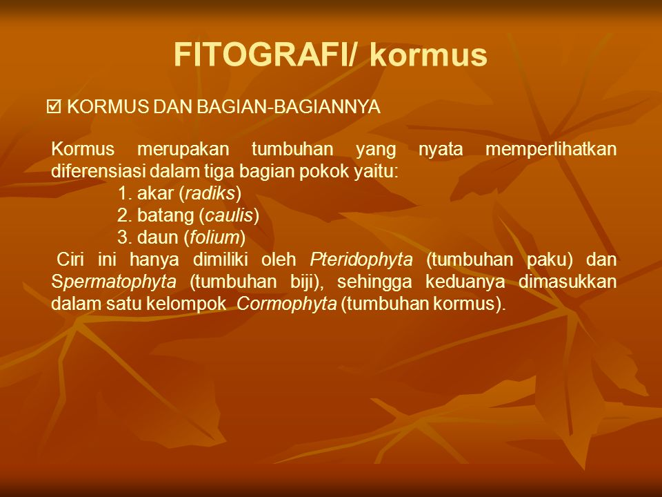 FITOGRAFI/ kormus  KORMUS DAN BAGIAN-BAGIANNYA