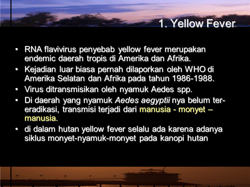 1. Yellow Fever RNA flavivirus penyebab yellow fever merupakan endemic daerah tropis di Amerika dan Afrika.