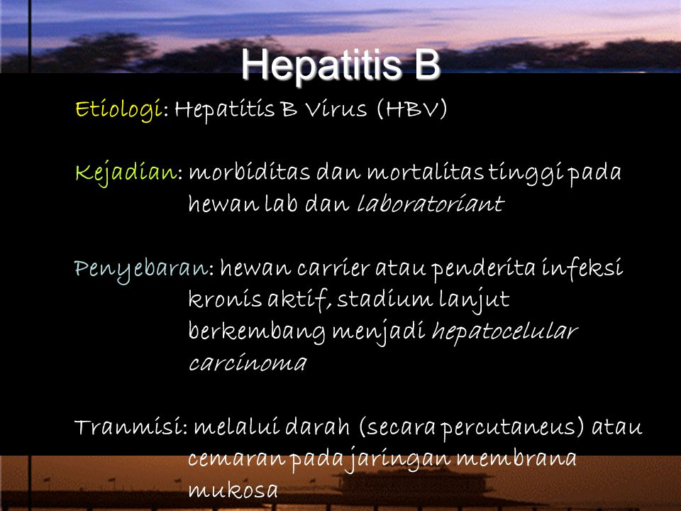 Hepatitis B Etiologi: Hepatitis B Virus (HBV)