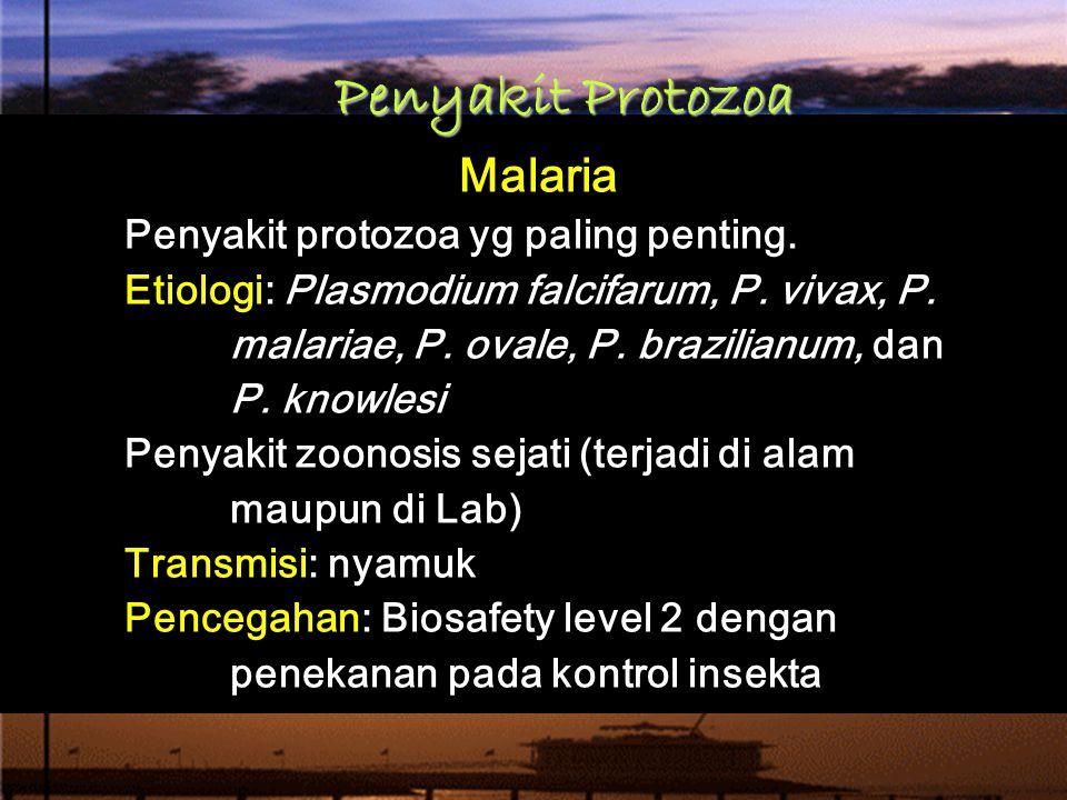 Penyakit Protozoa Malaria Penyakit protozoa yg paling penting.