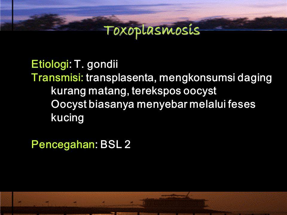 Toxoplasmosis Etiologi: T. gondii