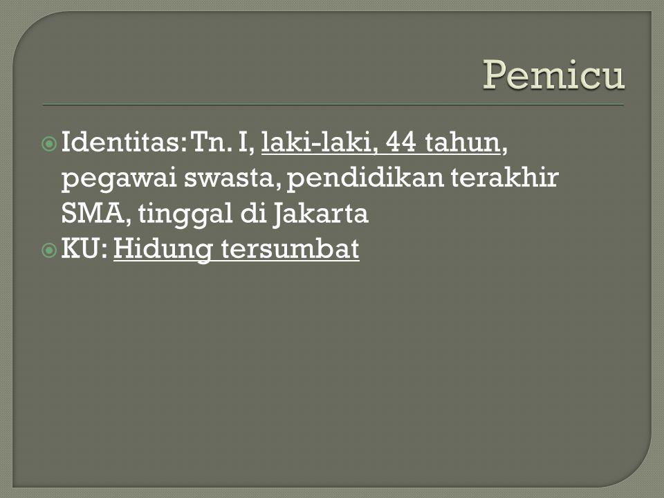 Pemicu Identitas: Tn. I, laki-laki, 44 tahun, pegawai swasta, pendidikan terakhir SMA, tinggal di Jakarta.