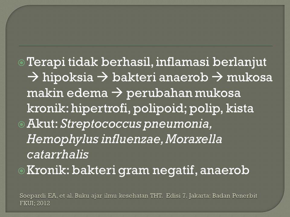 Kronik: bakteri gram negatif, anaerob