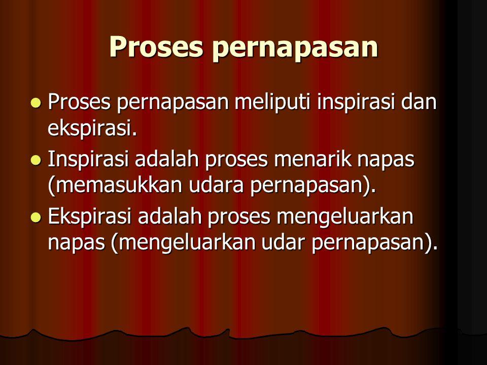Proses pernapasan Proses pernapasan meliputi inspirasi dan ekspirasi.