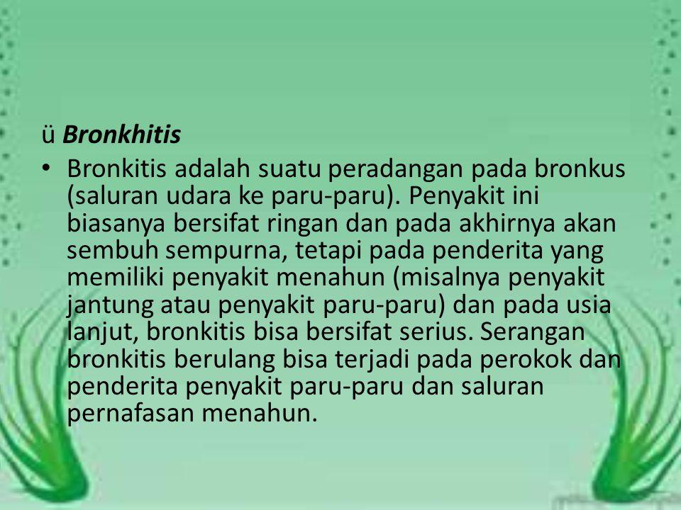 ü Bronkhitis